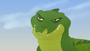 Let-sleeping-crocs-lie (156)