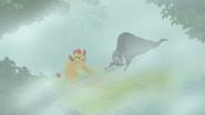 The-lost-gorillas (260)