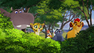 The-trouble-with-galagos (227)