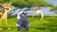 Ono-the-tickbird (80)
