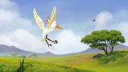 Ono-the-tickbird (307)