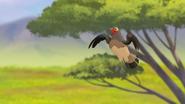 Ono-the-tickbird (245)
