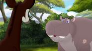 The-imaginary-okapi (61)