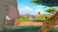 Follow-that-hippo (368)