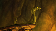 Let-sleeping-crocs-lie (243)