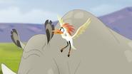 Ono-the-tickbird (183)