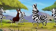 The-imaginary-okapi (344)