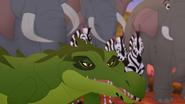 Let-sleeping-crocs-lie (277)
