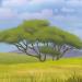 Mirihiforest-profile