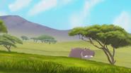 The-imaginary-okapi (36)