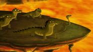 Let-sleeping-crocs-lie (433)
