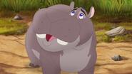 Follow-that-hippo (142)