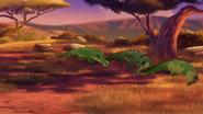 Let-sleeping-crocs-lie (335)