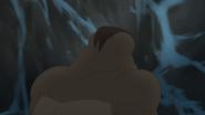 The-lost-gorillas (473)