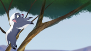 Ono-the-tickbird (207)