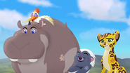 Follow-that-hippo (28)