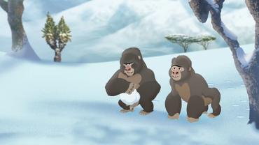 The-lost-gorillas (324)