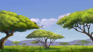 Ono-the-tickbird (211)
