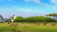 Follow-that-hippo (248)