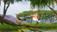 Ono-the-tickbird (337)