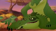 Let-sleeping-crocs-lie (378)