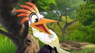 Ono-the-tickbird (503)