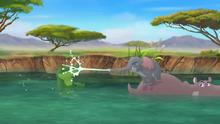 Follow-that-hippo (352)