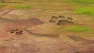 The-imaginary-okapi (139)