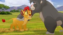 The-lost-gorillas (78)