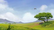 Ono-the-tickbird (306)