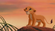 Lion-king2-disneyscreencaps.com-1729