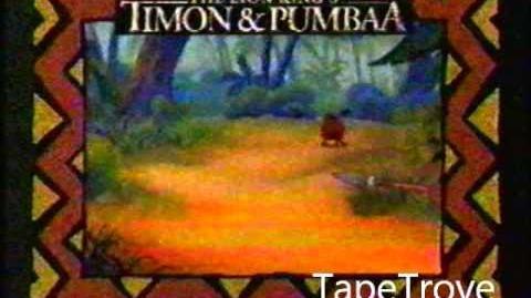 Timon and Pumbaa bumpers (RARE)