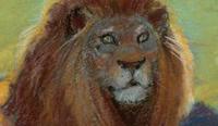 Papa lion box