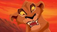Lion-king2-disneyscreencaps.com-2546