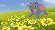 Rompthroughflowers