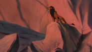 Lion-king-disneyscreencaps.com-8620