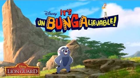 Who's Quicker? It's UnBungalievable! The Lion Guard Disney Junior