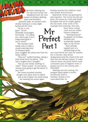 MrPerfect1