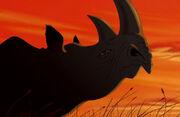 Rhinocircle