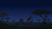 Lion-king2-disneyscreencaps-2