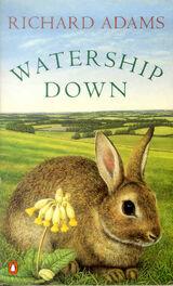 Watership-down1