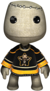 150px-LittleBigPlanet Karting Launch Rare Jersey.png