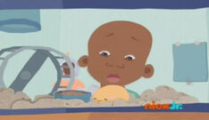 Little bill notices that elephant hasn't been eaten