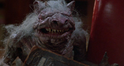 Rat ghoulie 1