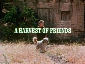 Title.harvestoffriends