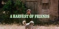 Episode 102: A Harvest of Friends