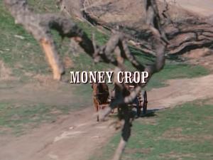 File:Title.moneycrop.jpg