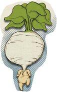 Turniphead