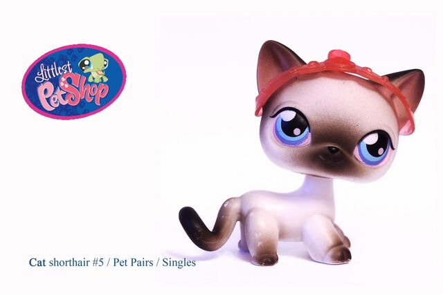 File:Littlest Pet Shop -5.jpg