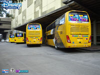 Liv and Maddie Premium Point-To-Point Buses